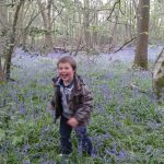Bear hunting amongst the bluebells!